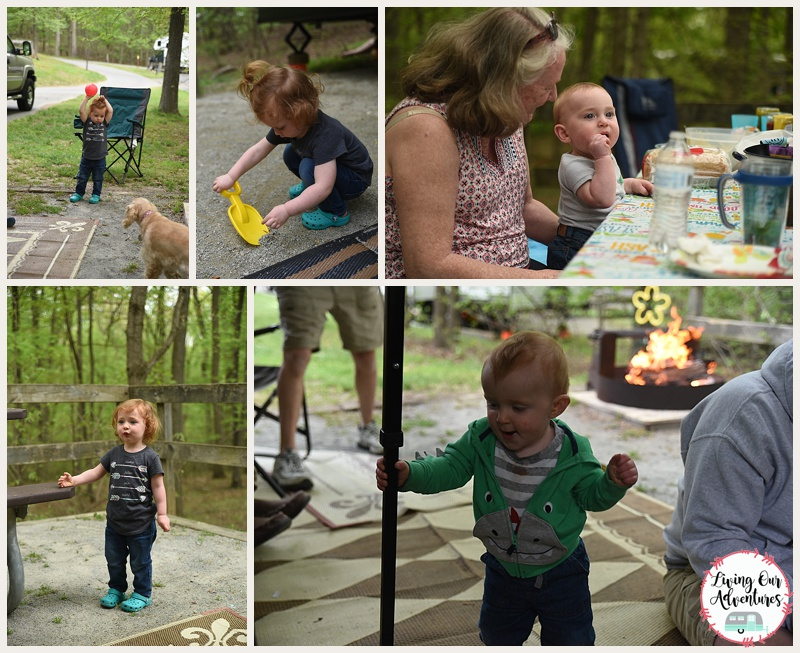 Why Camp at Elk Neck State Park