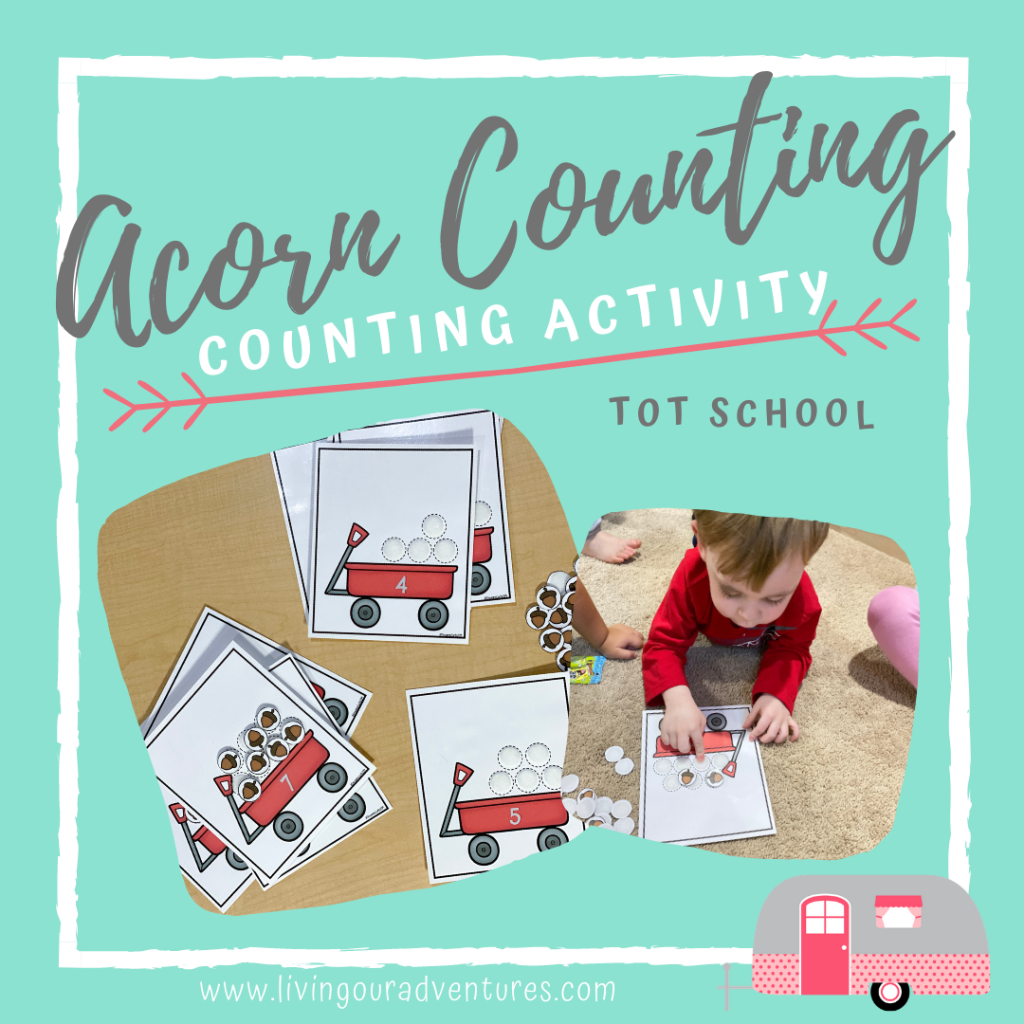 Acorn Counting- counting activity